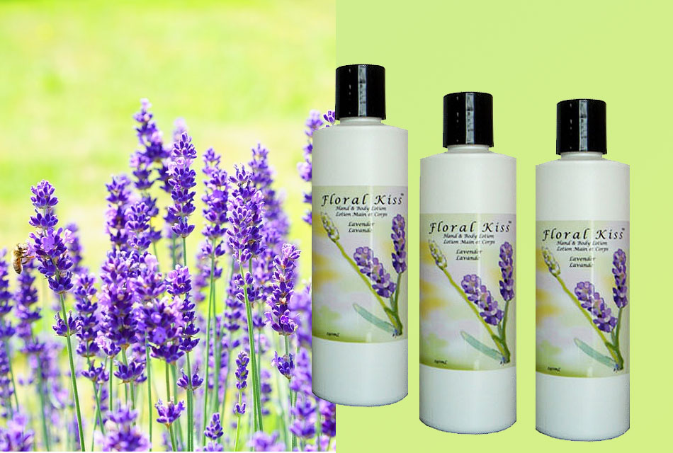Lavender Natural Hand and Body Lotion