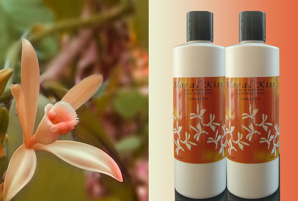 Vanilla Twist Natural Hand and Body Lotion