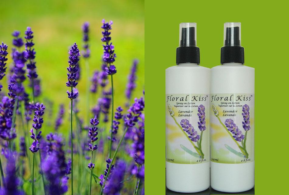 Lavender Spray Lotion
